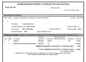 Commercial Property Coverage Part Declarations CP DS 00