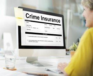 Commercial Crime Insurance