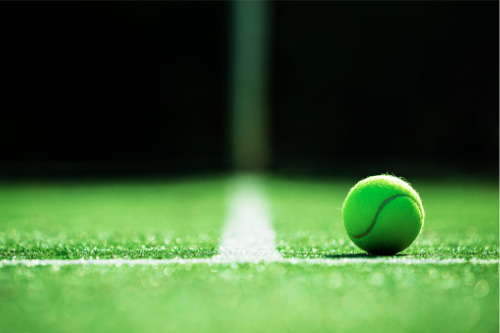 Coronavirus: Wimbledon has coverage against global pandemic – reports