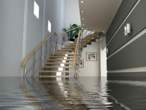 How Does Excess Flood Insurance Work?